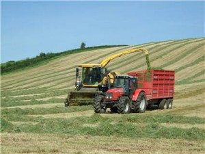 silage making at country kids